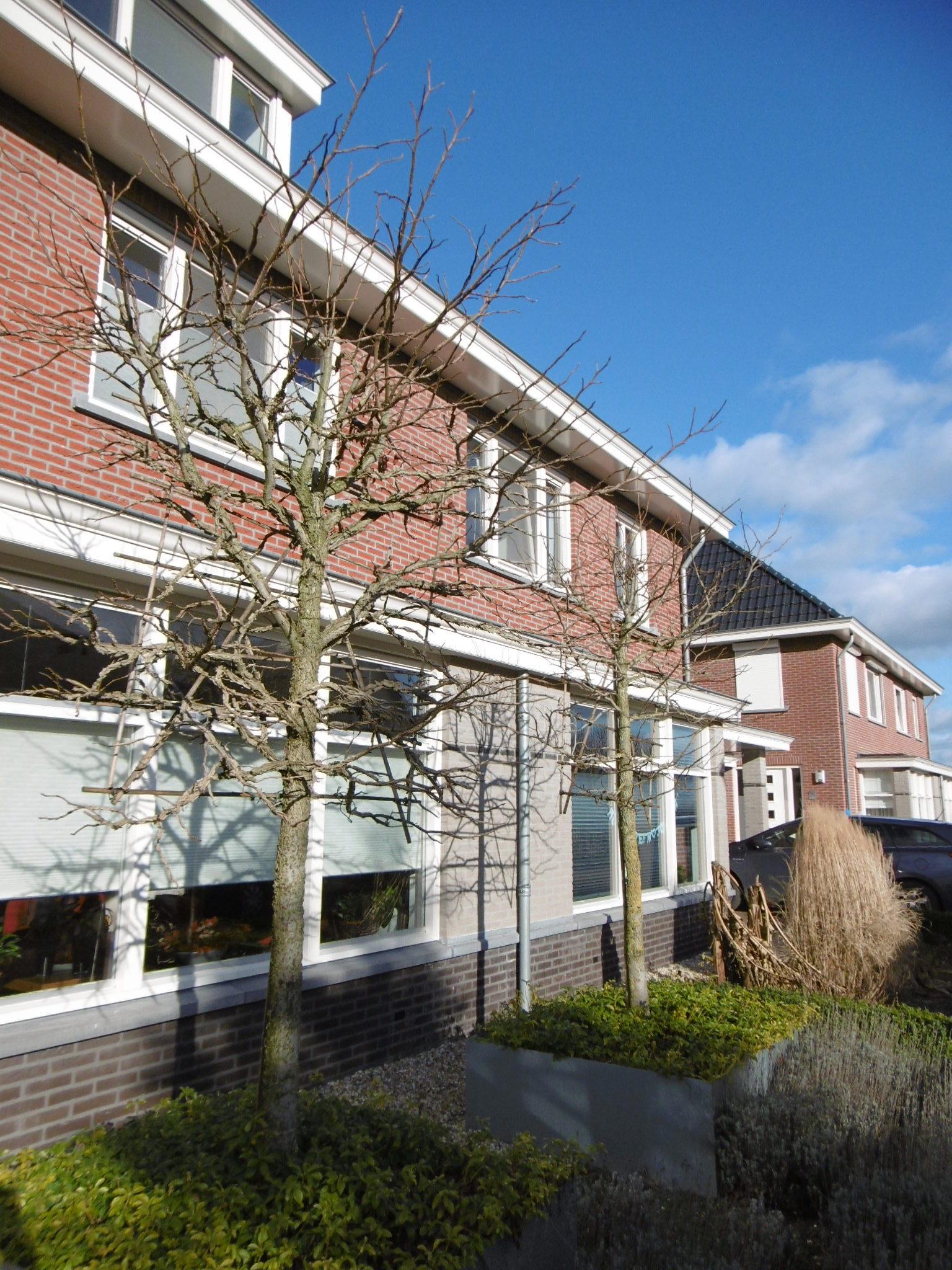 Woonhuizen-Afferden-Maas&Waalbouw-9